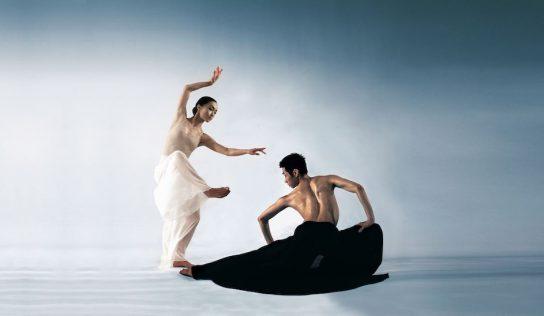 Danza y artes marciales se combinan en Film & Arts